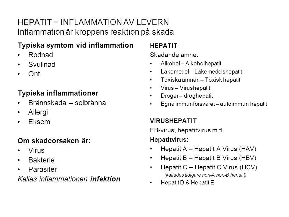 HEPATIT = INFLAMMATION AV LEVERN Inflammation är kroppens reaktion på skada