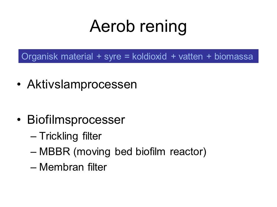 Aerob rening Aktivslamprocessen Biofilmsprocesser Trickling filter