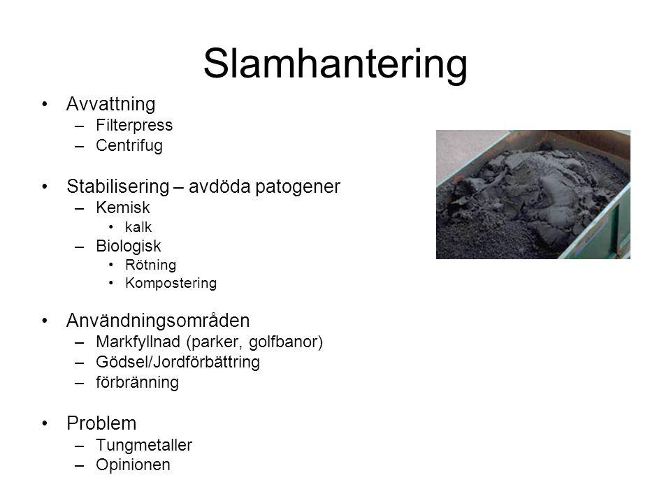 Slamhantering Avvattning Stabilisering – avdöda patogener