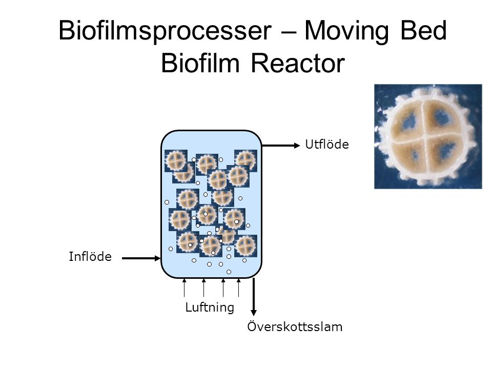 Biofilmsprocesser – Moving Bed Biofilm Reactor