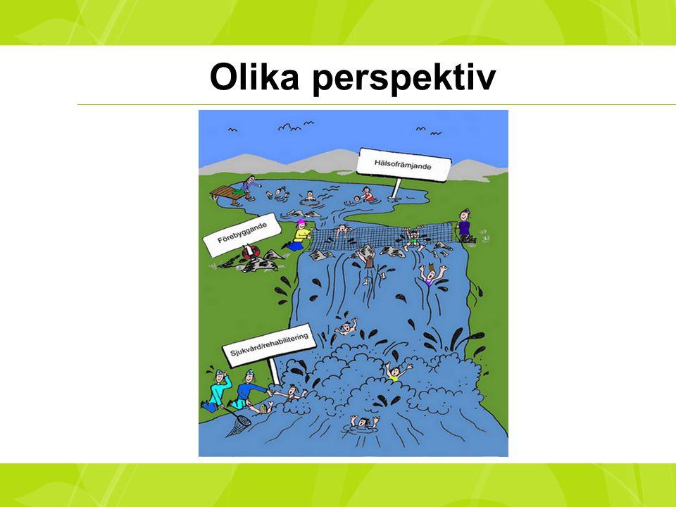Olika perspektiv Beskriv de olika perspektiven och arbetssätten.