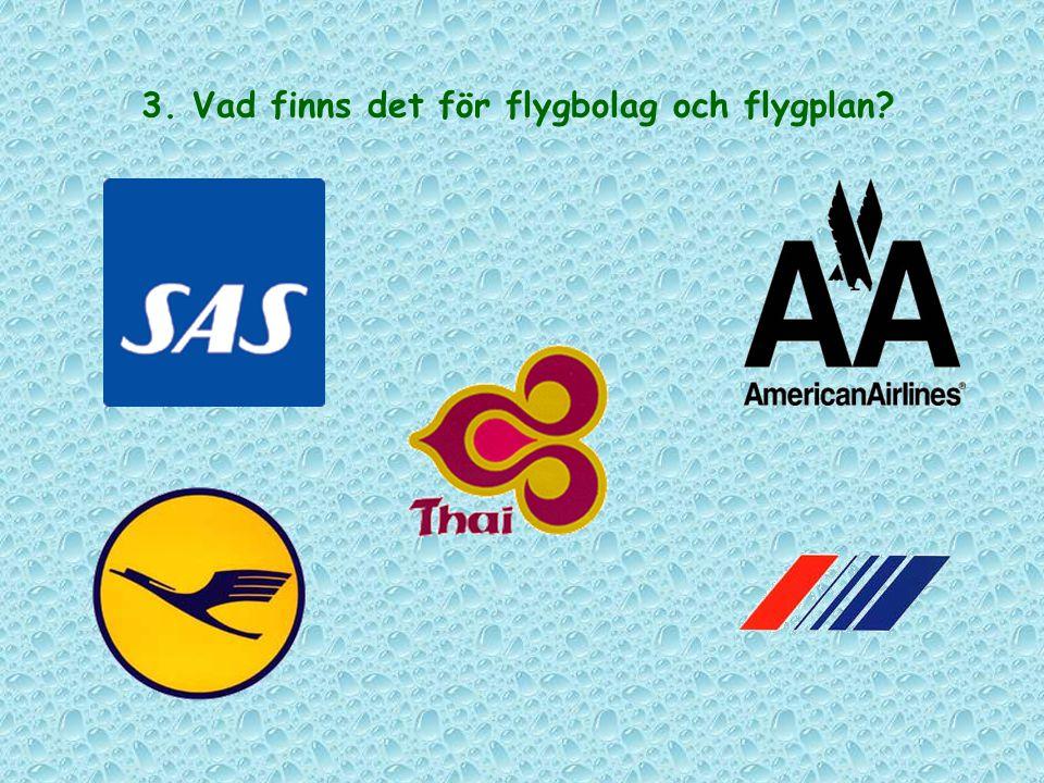 3. Vad finns det för flygbolag och flygplan