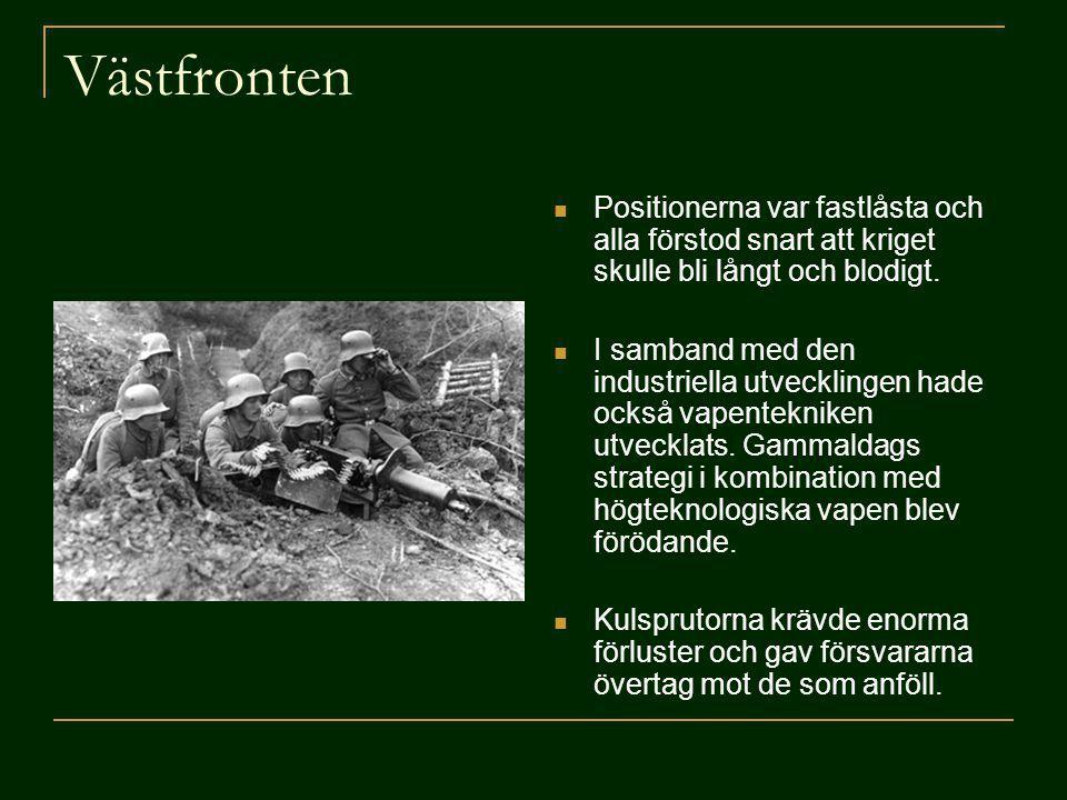 Västfronten Positionerna var fastlåsta och alla förstod snart att kriget skulle bli långt och blodigt.