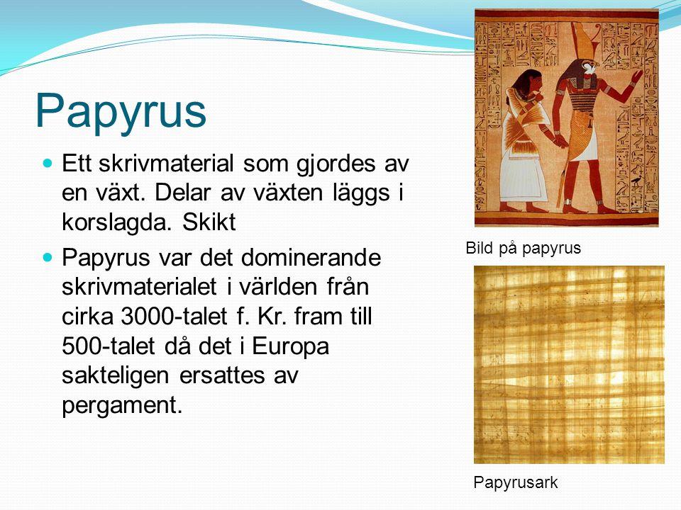 Papyrus Ett skrivmaterial som gjordes av en växt. Delar av växten läggs i korslagda. Skikt.