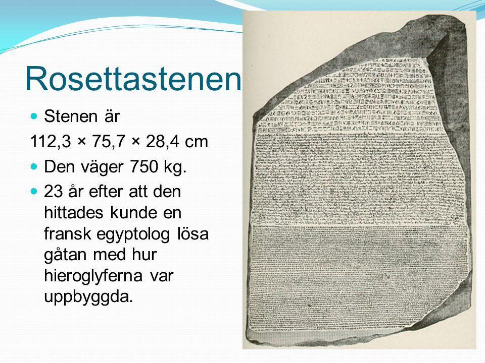 Rosettastenen Stenen är 112,3 × 75,7 × 28,4 cm Den väger 750 kg.