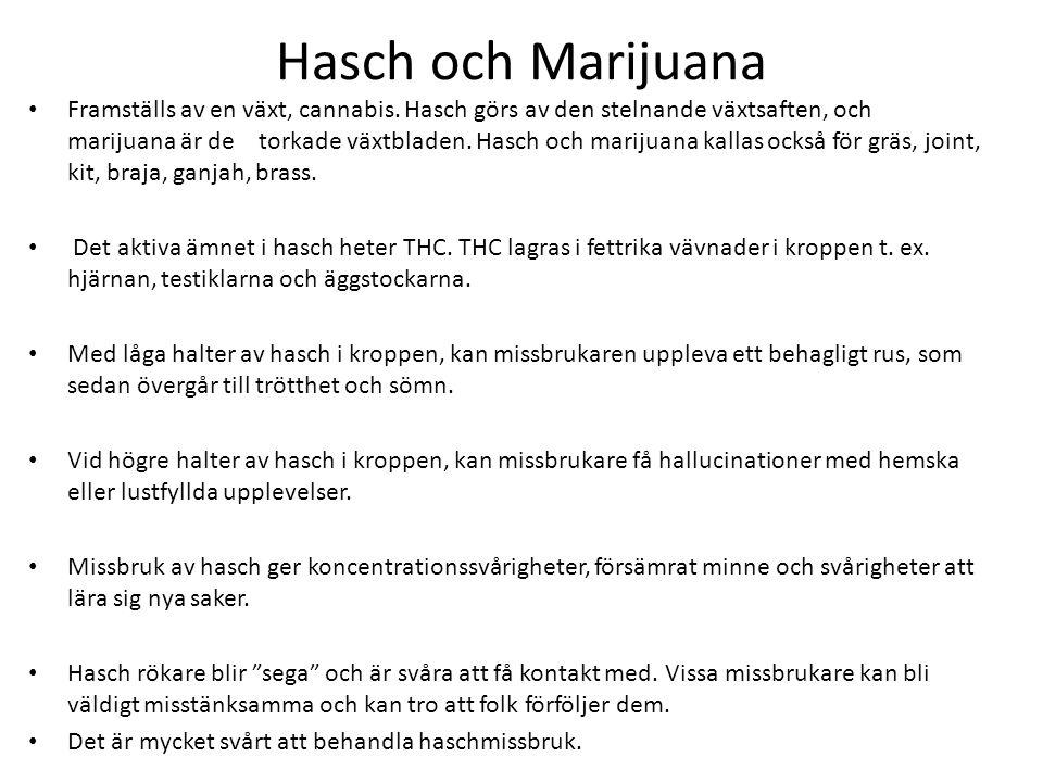 Hasch och Marijuana