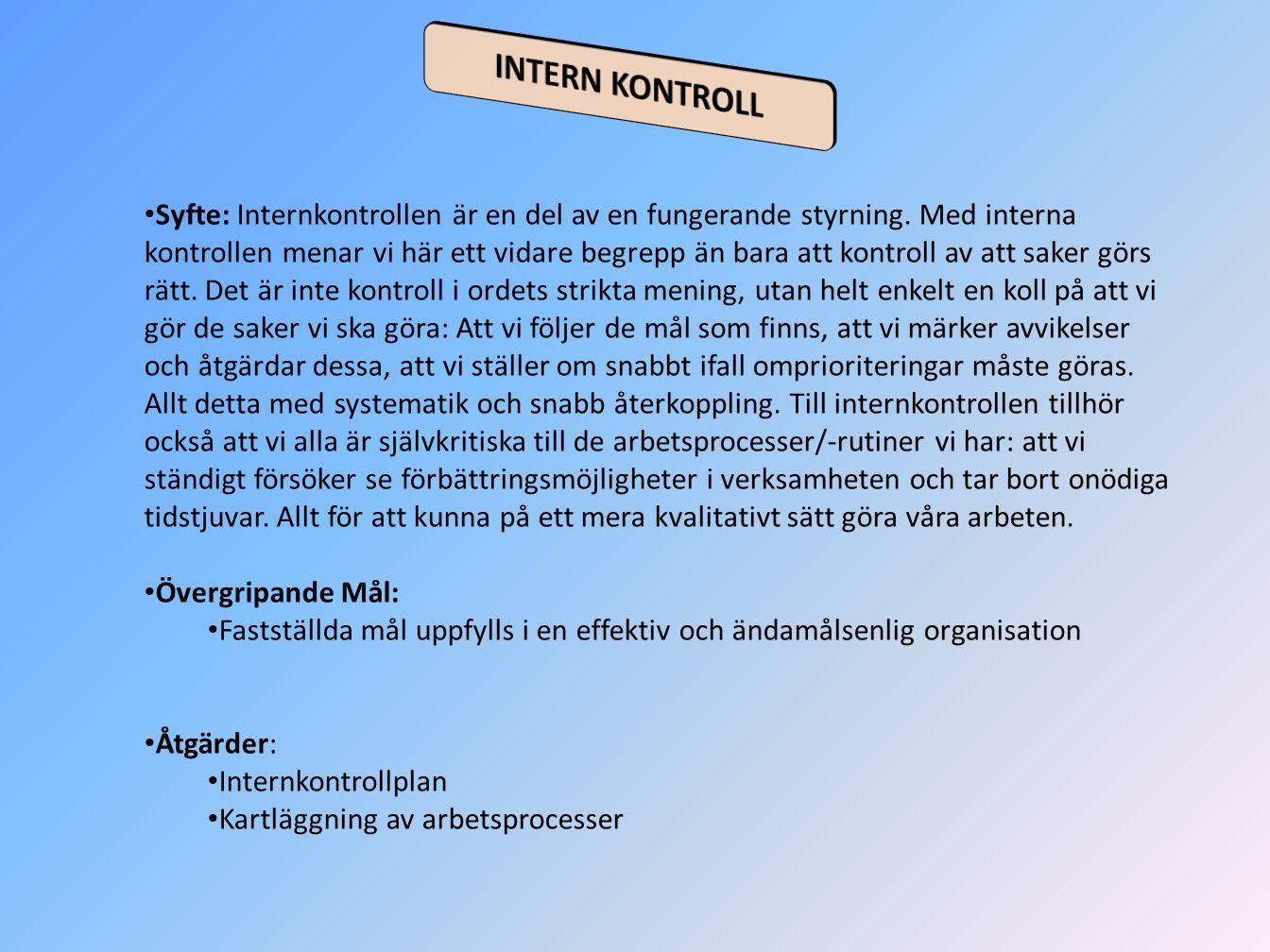 INTERN KONTROLL