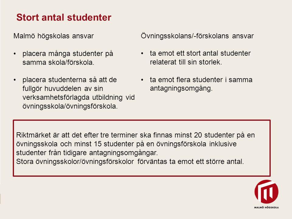 Stort antal studenter Malmö högskolas ansvar