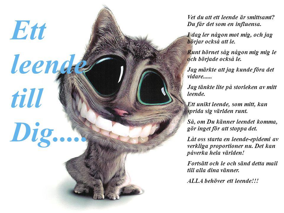 Ett leende. till. Dig..... Vet du att ett leende är smittsamt Du får det som en influensa. I dag ler någon mot mig, och jag börjar också att le.