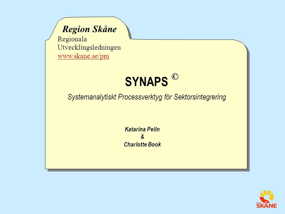 Systemanalytiskt Processverktyg för Sektorsintegrering
