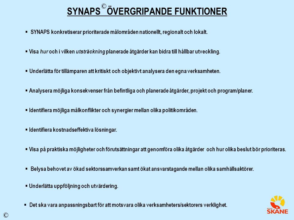 SYNAPS ÖVERGRIPANDE FUNKTIONER
