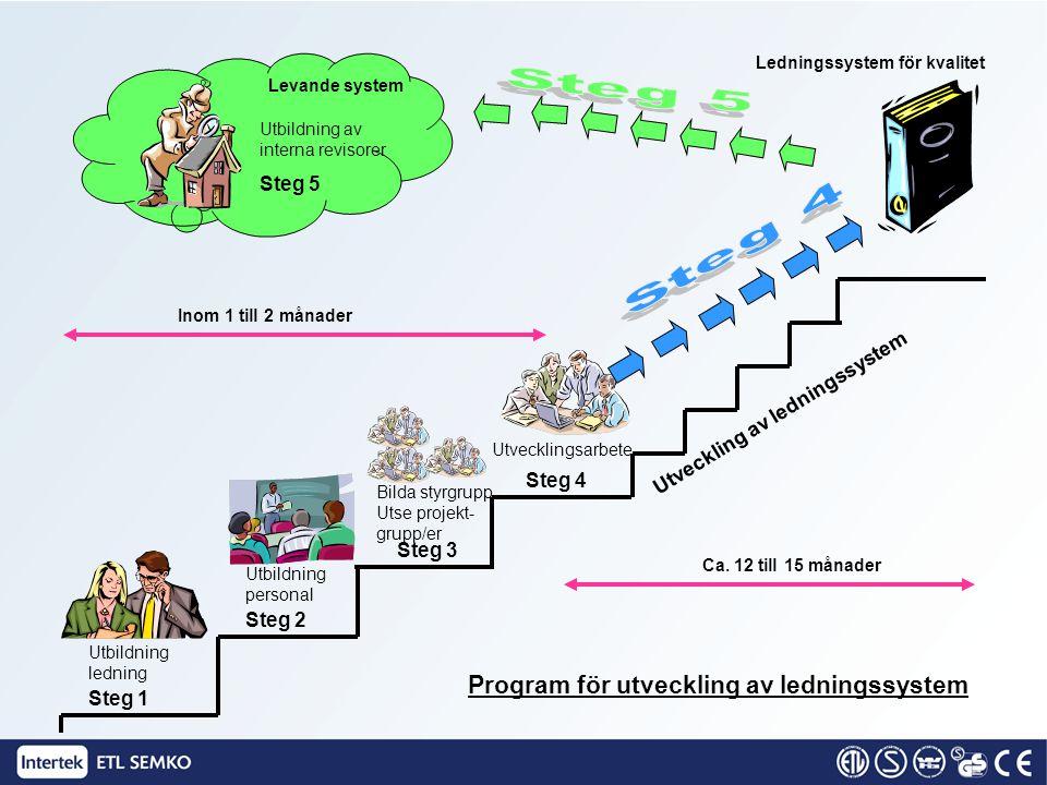 Program för utveckling av ledningssystem