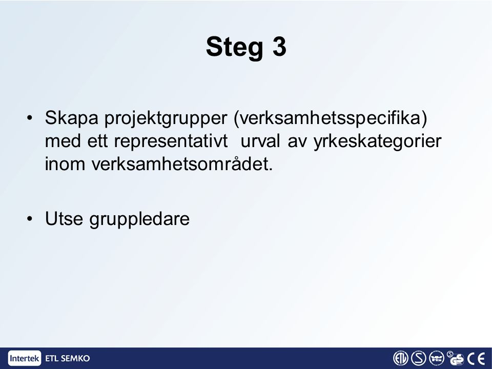 Steg 3 Skapa projektgrupper (verksamhetsspecifika) med ett representativt urval av yrkeskategorier inom verksamhetsområdet.