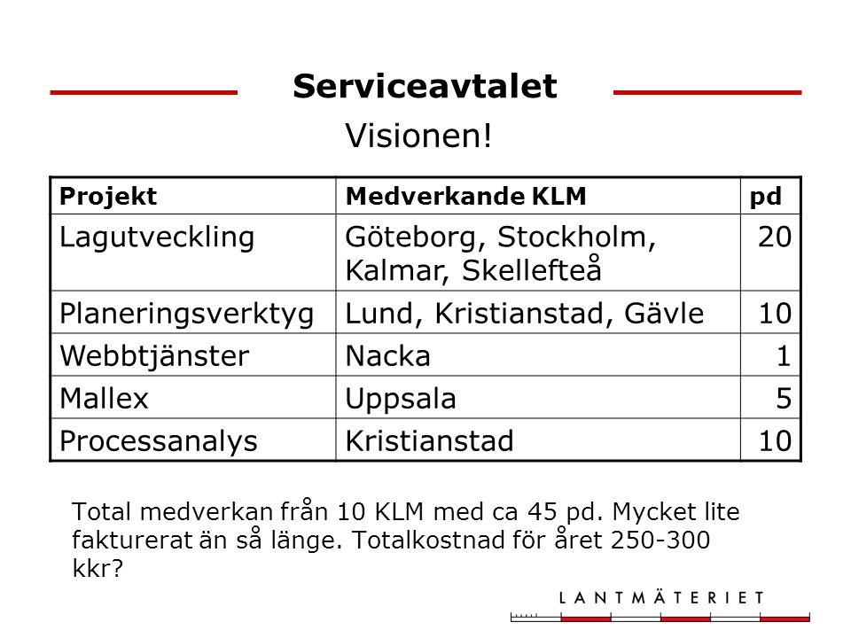 Serviceavtalet Visionen! Lagutveckling