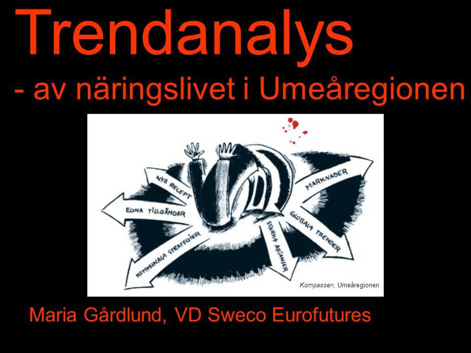 Trendanalys - av näringslivet i Umeåregionen