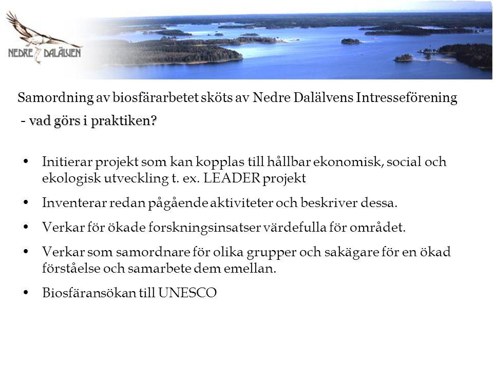Samordning av biosfärarbetet sköts av Nedre Dalälvens Intresseförening