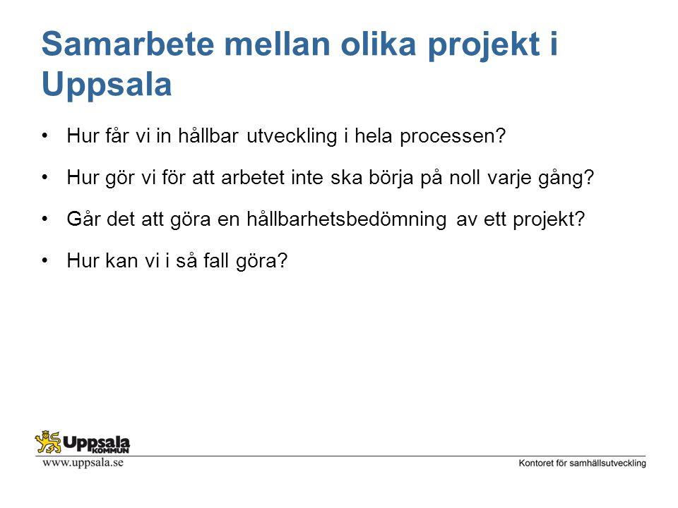 Samarbete mellan olika projekt i Uppsala
