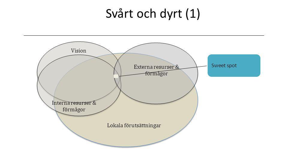 Svårt och dyrt (1) Vision Sweet spot Externa resurser & förmågor