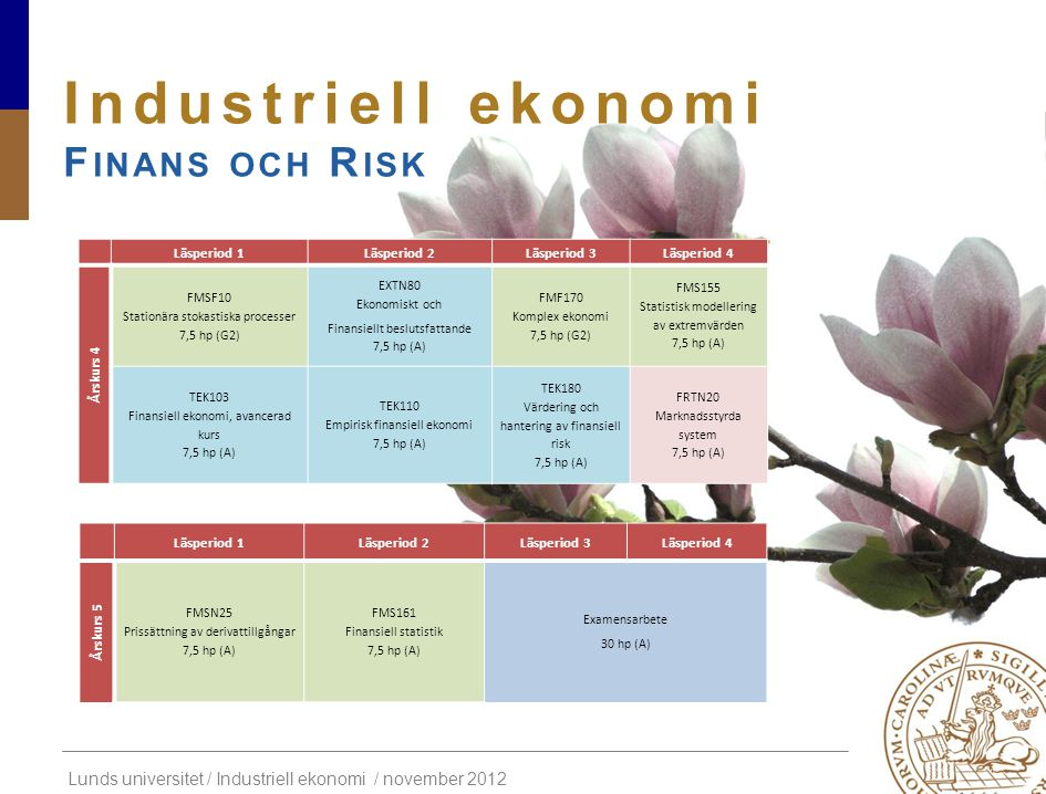 Industriell ekonomi Finans och Risk