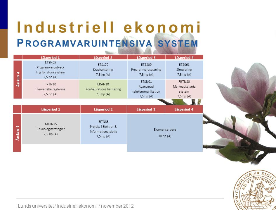 Industriell ekonomi Programvaruintensiva system