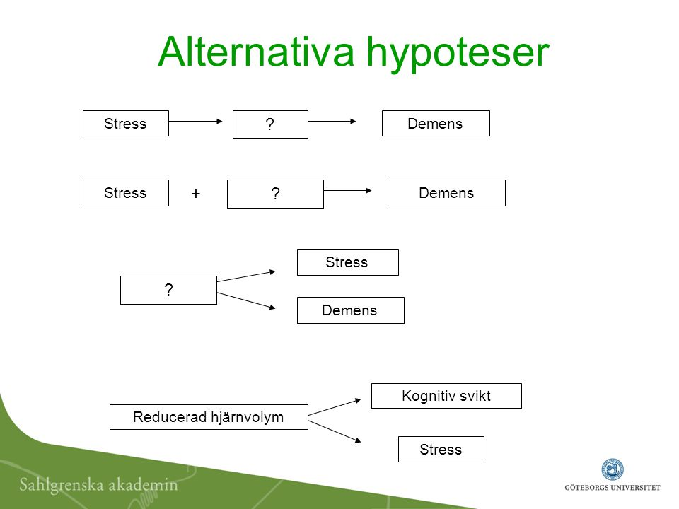 Alternativa hypoteser