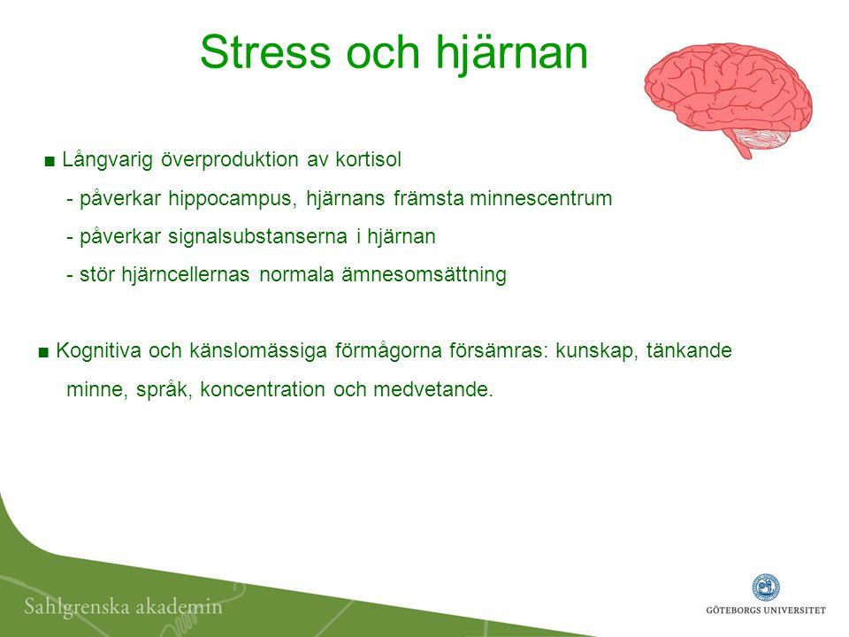 Stress och hjärnan