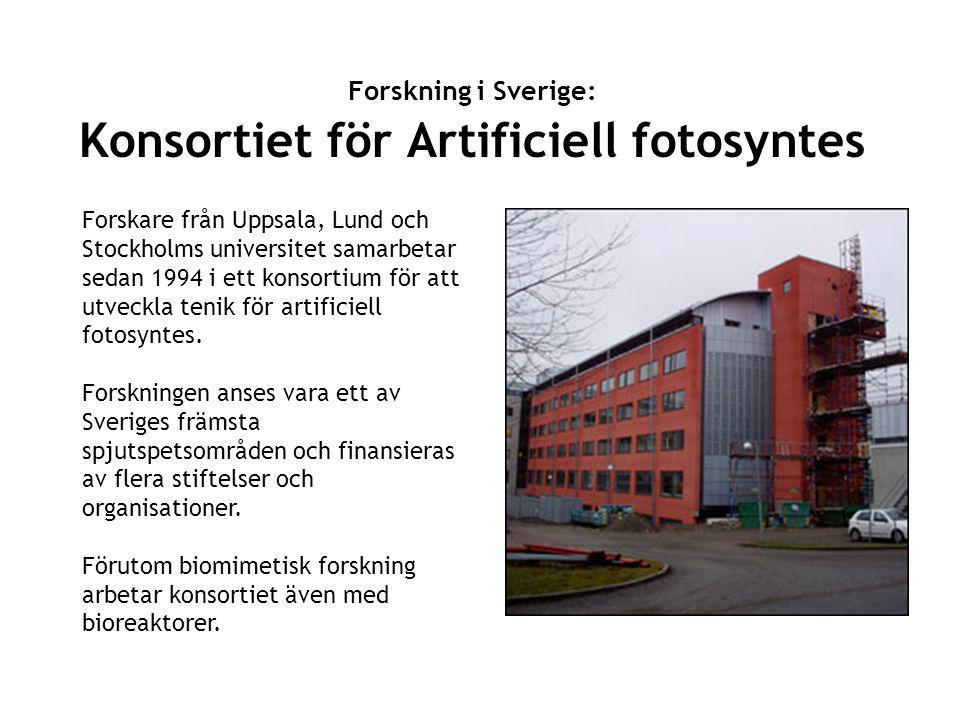 Forskning i Sverige: Konsortiet för Artificiell fotosyntes