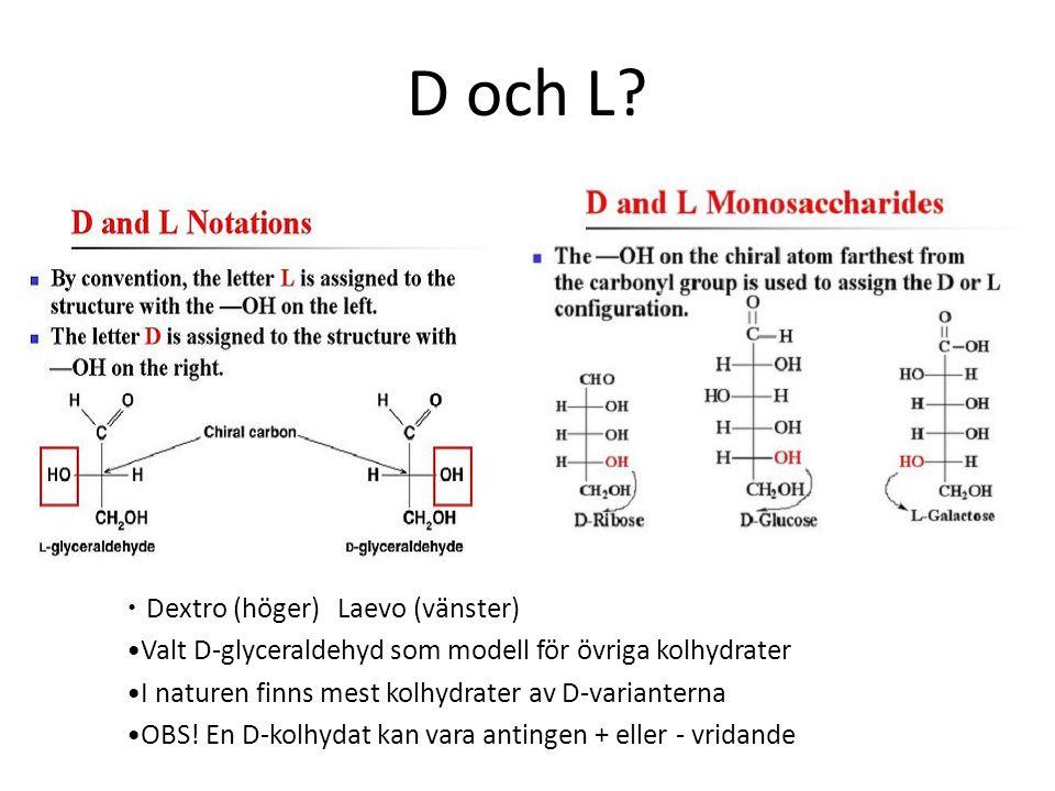 D och L Dextro (höger) Laevo (vänster)