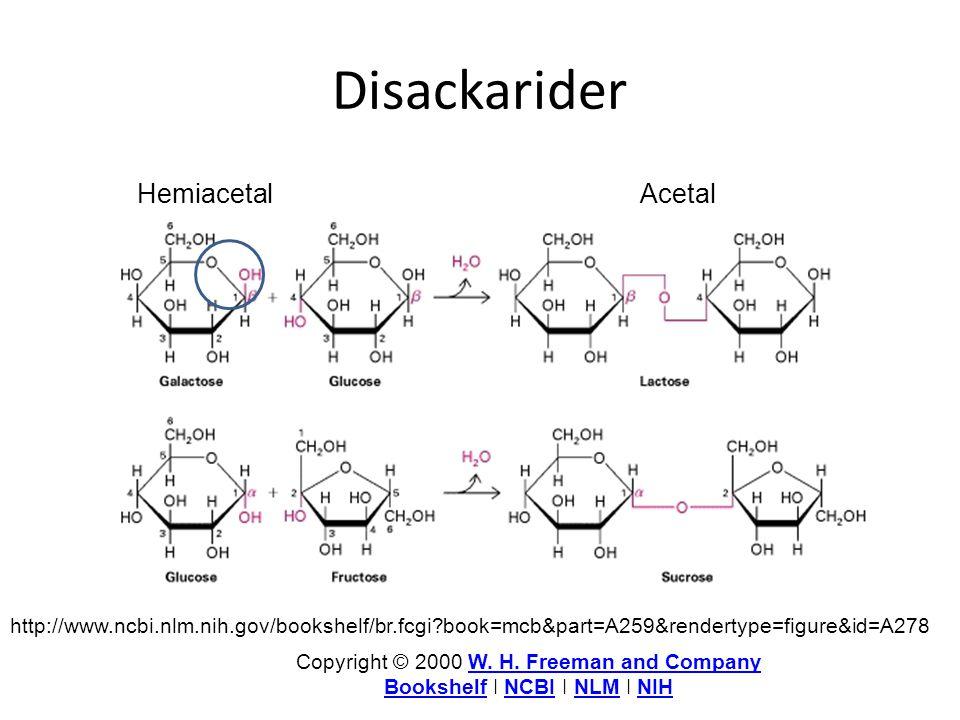 Disackarider Hemiacetal Acetal