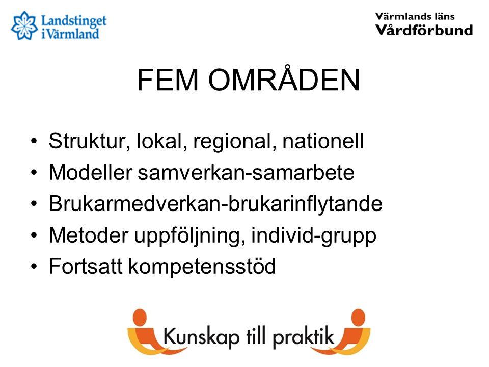 FEM OMRÅDEN Struktur, lokal, regional, nationell