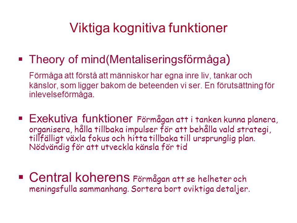 Viktiga kognitiva funktioner