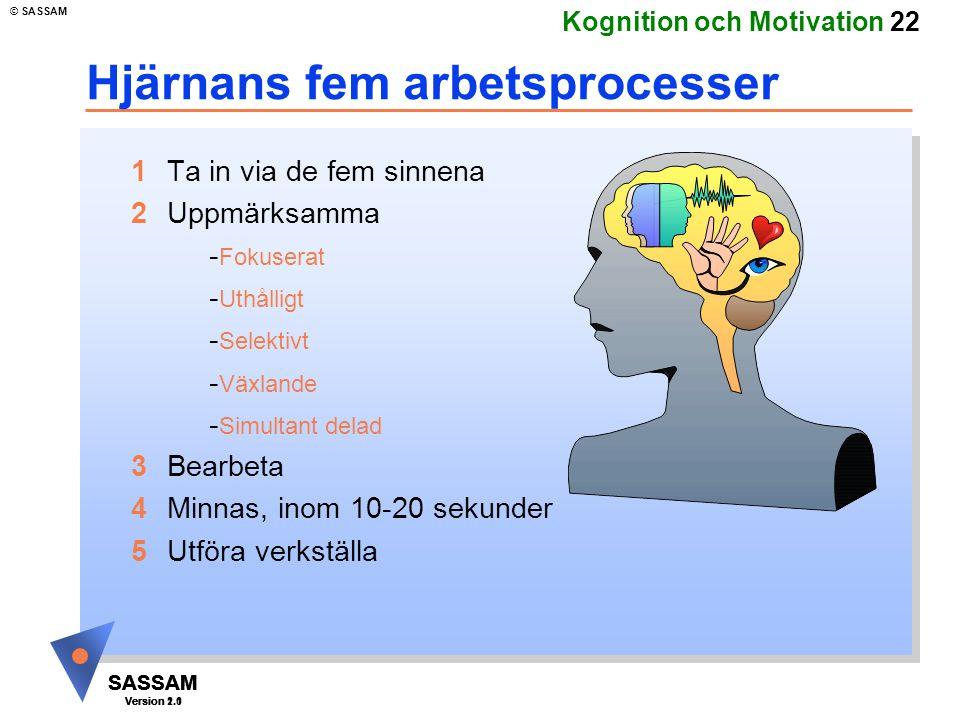 Hjärnans fem arbetsprocesser