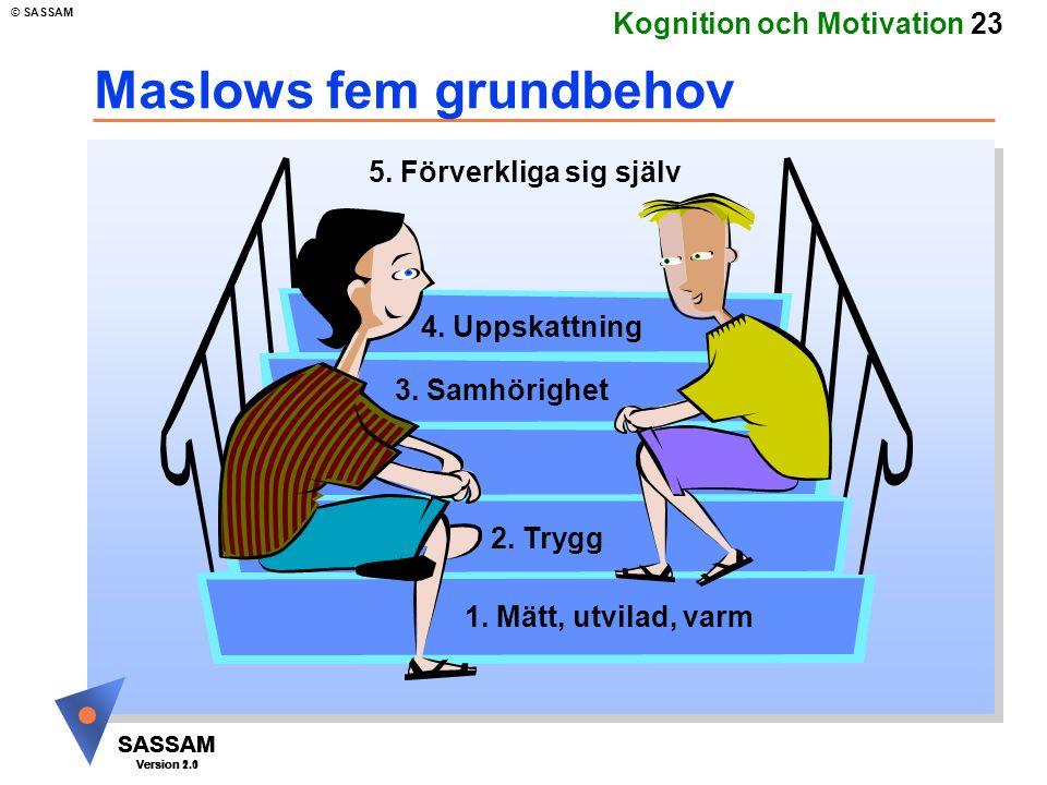 Maslows fem grundbehov