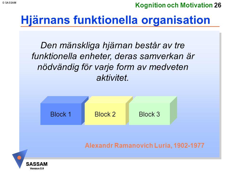 Hjärnans funktionella organisation