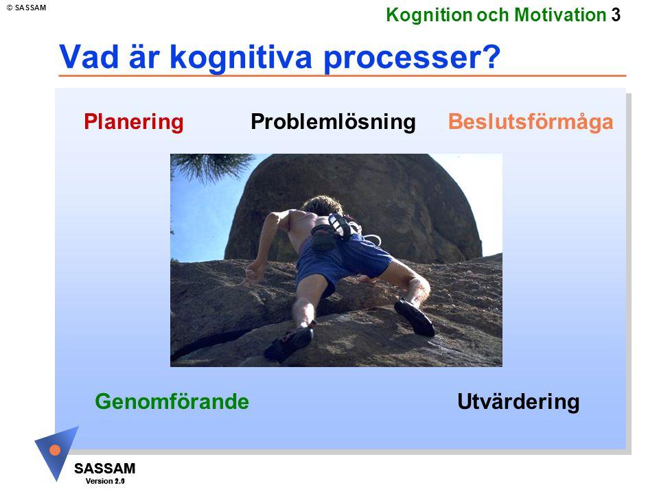 Vad är kognitiva processer
