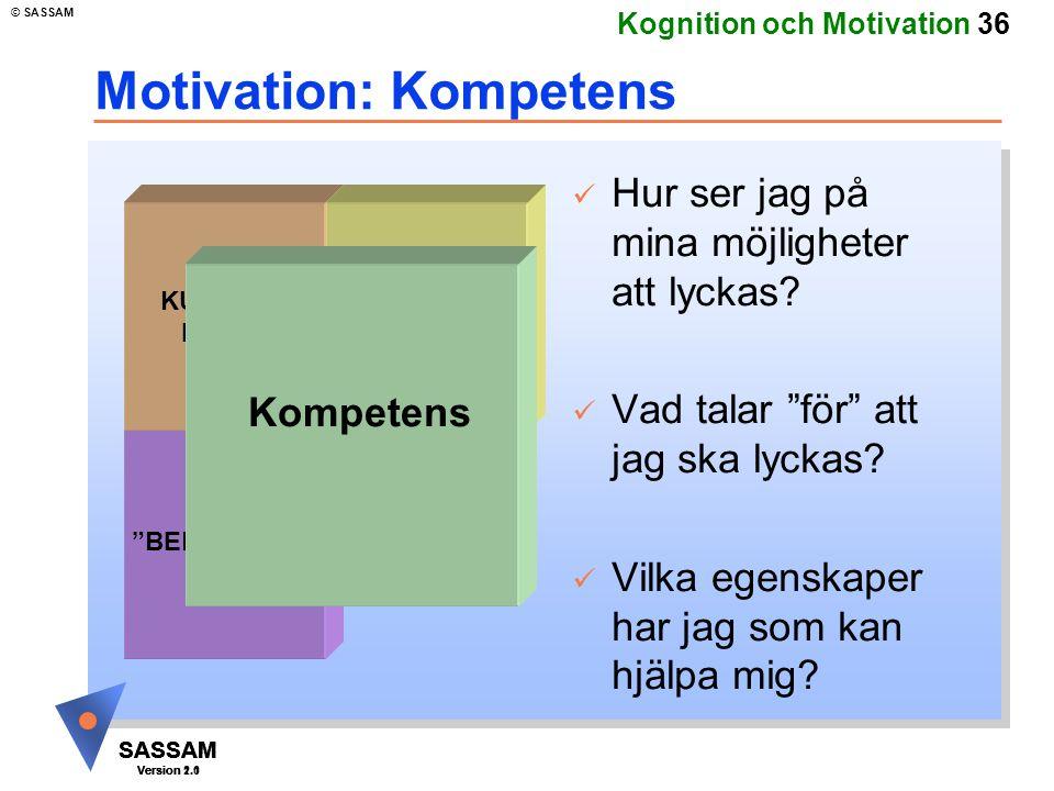 Motivation: Kompetens