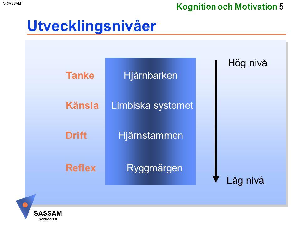 Utvecklingsnivåer Hög nivå Tanke Hjärnbarken Känsla Limbiska systemet