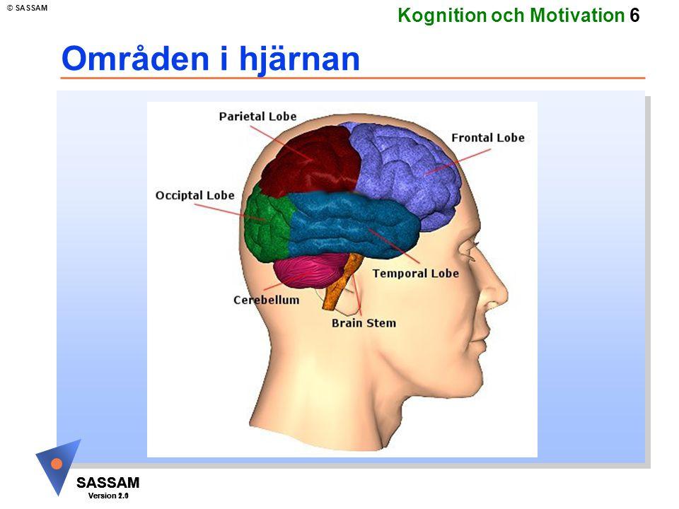 Områden i hjärnan Kommentar: