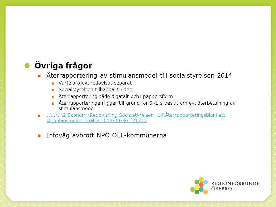 Övriga frågor Återrapportering av stimulansmedel till socialstyrelsen 2014. Varje projekt redovisas separat.