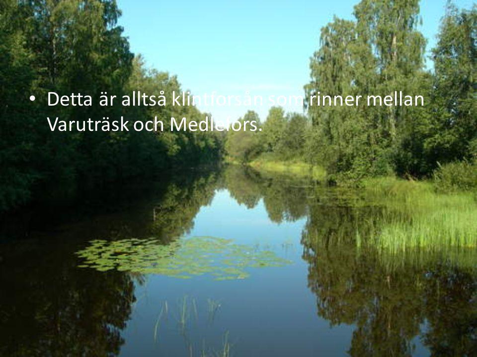 Detta är alltså klintforsån som rinner mellan Varuträsk och Medlefors.