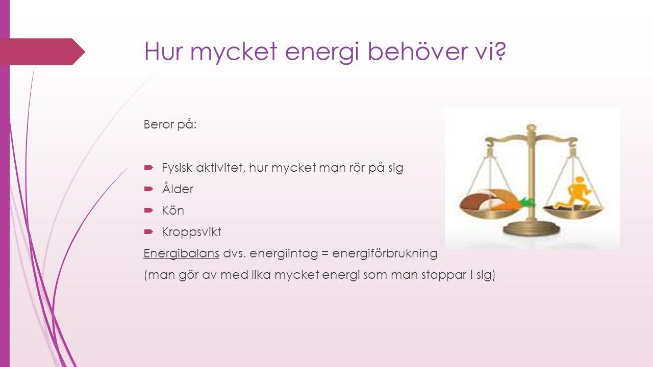 Hur mycket energi behöver vi