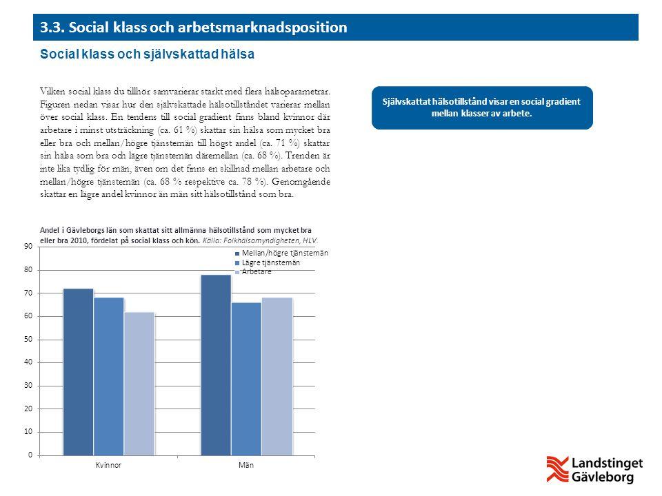 3.3. Social klass och arbetsmarknadsposition