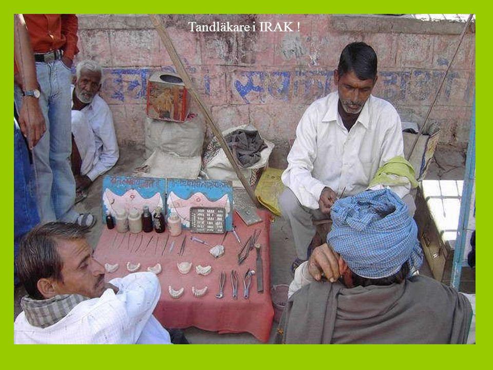 Tandläkare i IRAK !