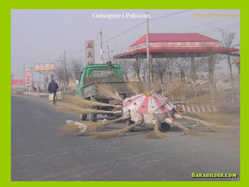 Gatsopare i Pakistan….