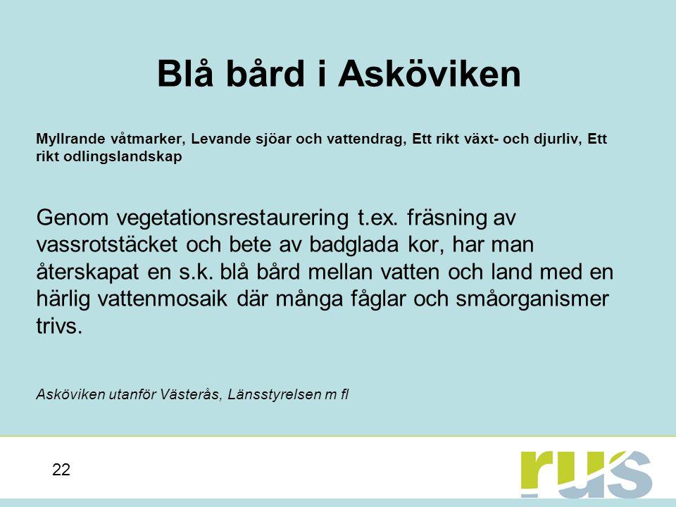 Blå bård i Asköviken Myllrande våtmarker, Levande sjöar och vattendrag, Ett rikt växt- och djurliv, Ett rikt odlingslandskap.