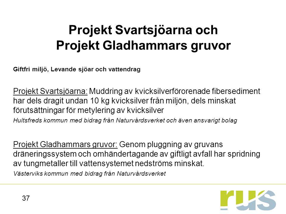 Projekt Svartsjöarna och Projekt Gladhammars gruvor