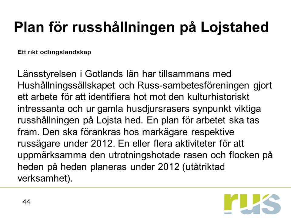 Plan för russhållningen på Lojstahed