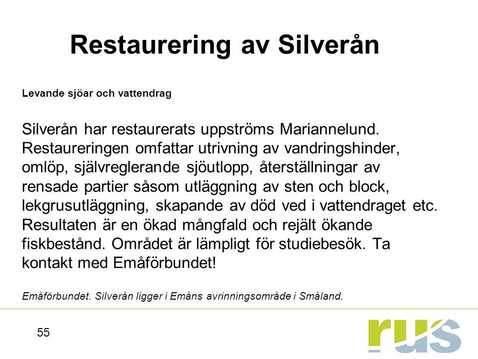 Restaurering av Silverån