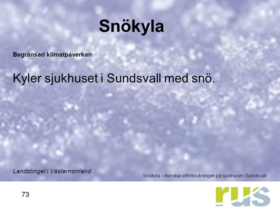 Snökyla Kyler sjukhuset i Sundsvall med snö. 73