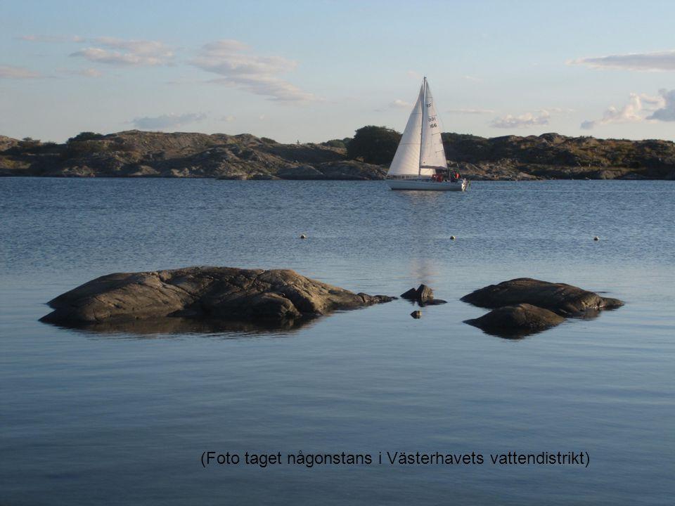 (Foto taget någonstans i Västerhavets vattendistrikt)